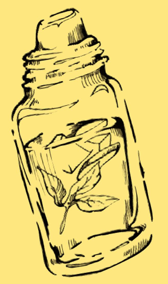 sage honey nectar